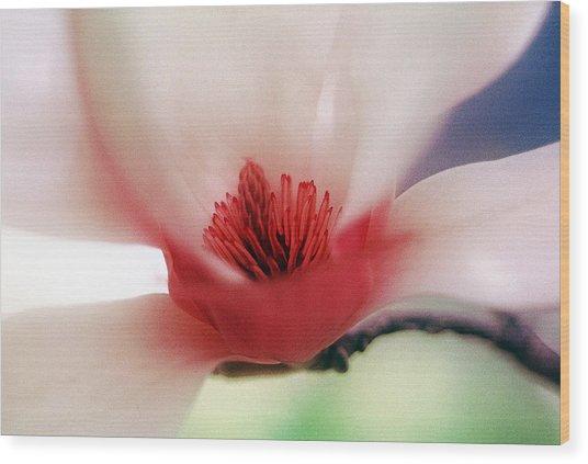 Flower 27 Wood Print