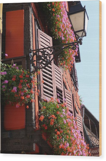 Flower Boxes And Shutters In Alsace Wood Print by Christopher Mullard