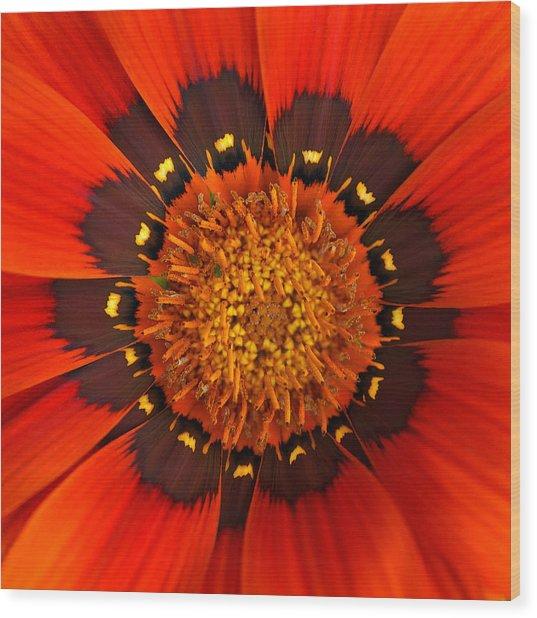 Flower Eye Wood Print