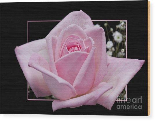 Flower In Frame -9 Wood Print