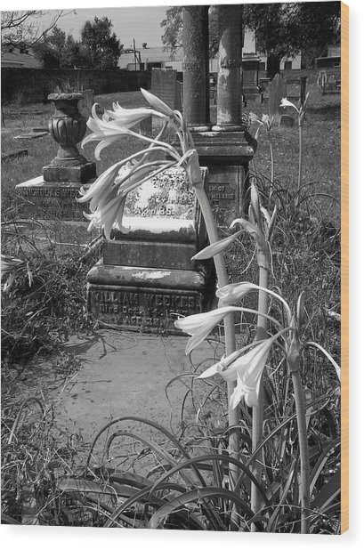Flower Old Grave Wood Print by Floyd Smith