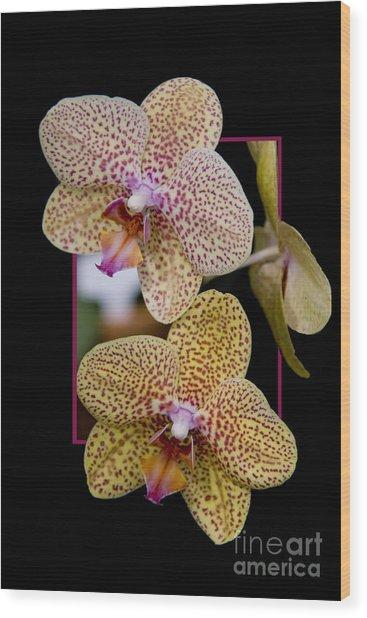 Flowerin Frame -8 Wood Print