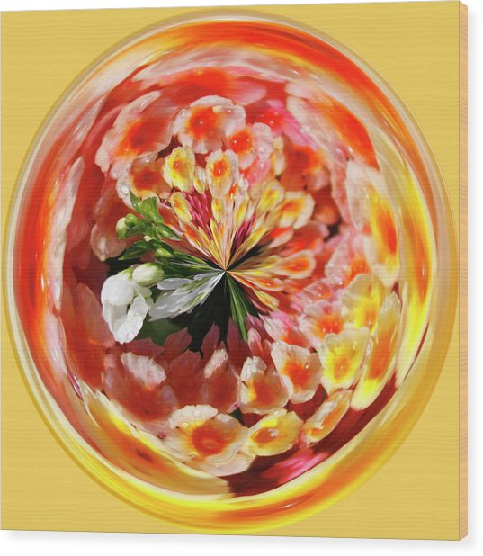 Flowering Orb Wood Print