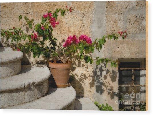 Flowerpot On Stairs In Kocura Croatia Wood Print