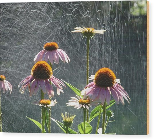 Flowers In The Rain Wood Print