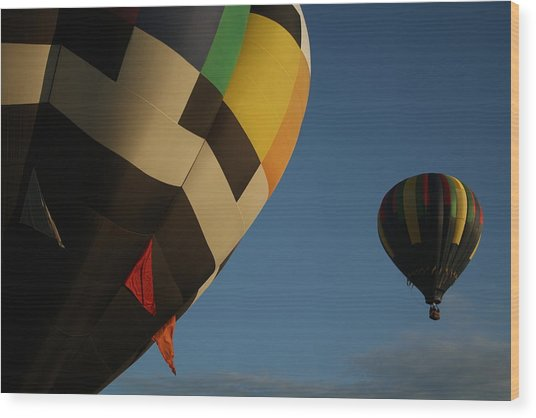 Fly Away Wood Print by Fredrik Ryden