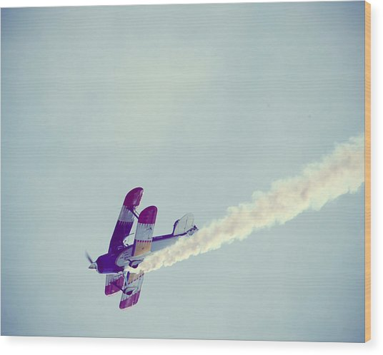 Flying High Wood Print by Amelia Matarazzo