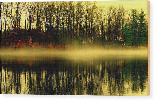 Fog At  Farrington Lake Wood Print