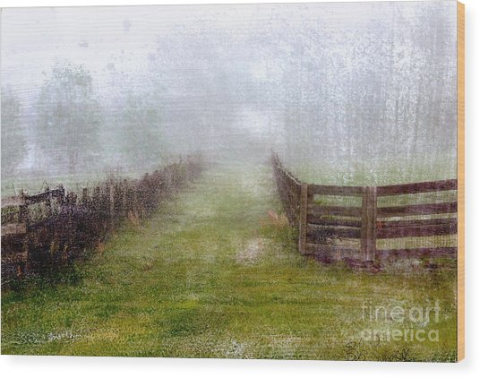 Foggy Fence Wood Print
