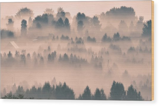 Foggy Morning 21 Wood Print