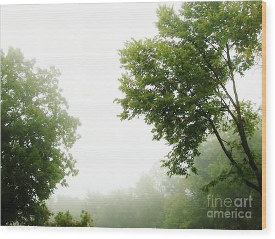 Foggy Morning Wood Print by Marsha Heiken