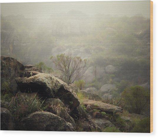 Foggy Wood Print by Pablo Chamorro Photography