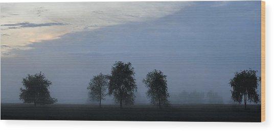 Foggy Pennsylvania Treeline Wood Print