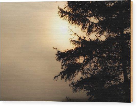Foggy Start Wood Print by Gary Smith