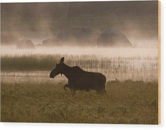 Foggy Stroll Wood Print