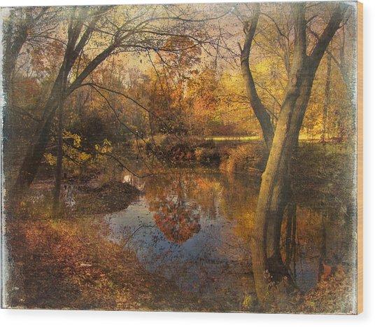 Foliage Canvas Wood Print by John Rivera