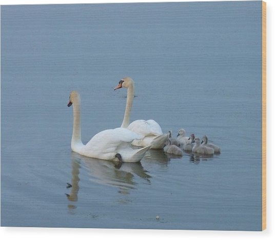 Following Mommy And Daddy Wood Print by Jeanette Oberholtzer
