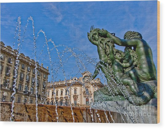 Fontana Di Piazza Solferino Wood Print