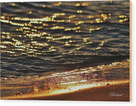 Fools Gold Wood Print