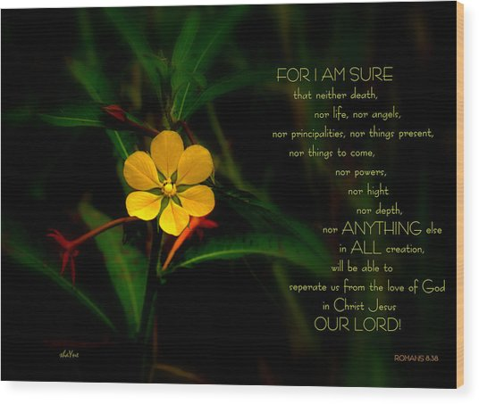 For I Am Sure Wood Print by Shayne Johnson Fleming