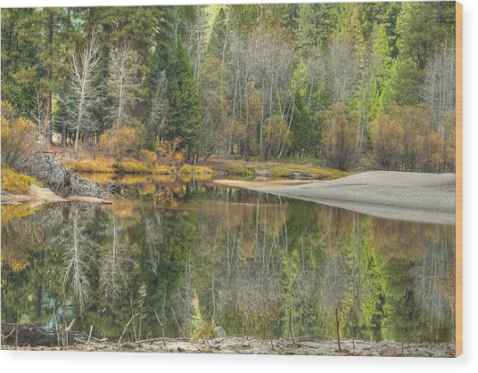 Forest Reflection-merced River Wood Print by Ron Schwager