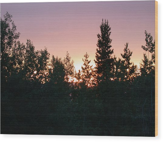 Forest Sunset Silhouette Wood Print