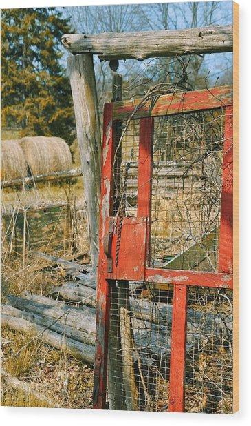 Forgotten Garden Wood Print by JAMART Photography