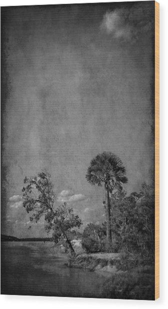 Fort George River Wood Print