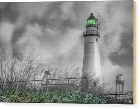 Fort Gratiot Lighthouse Wood Print