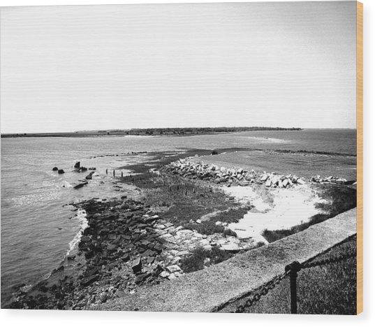 Fort Sumter Wood Print