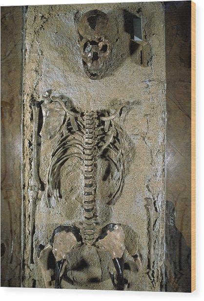 Fossilised Skeleton Of Homo Erectus Boy From Kenya Wood Print by Volker Stegernordstar - 4 Million Years Of Man