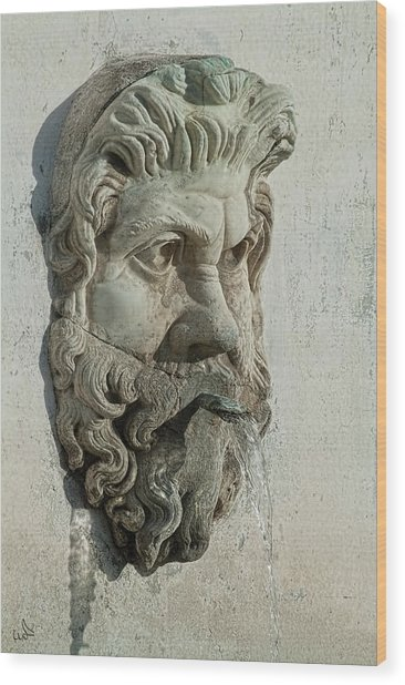 Fountain Head Wood Print