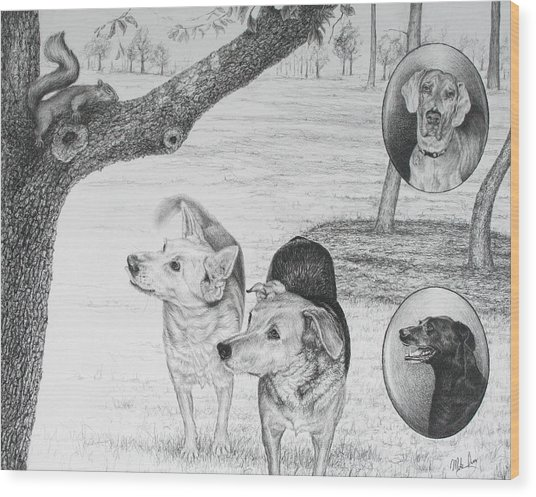 Four Dogs And A Squirrel Wood Print