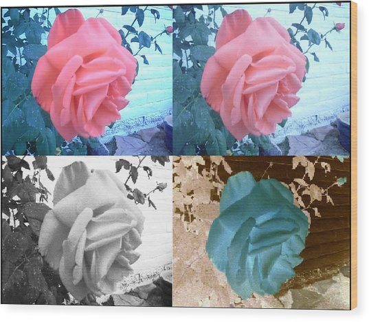 Four One Rose Wood Print