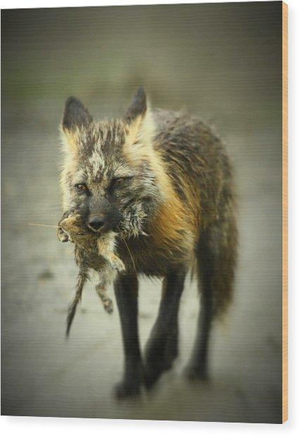 Foxes Dinner Wood Print