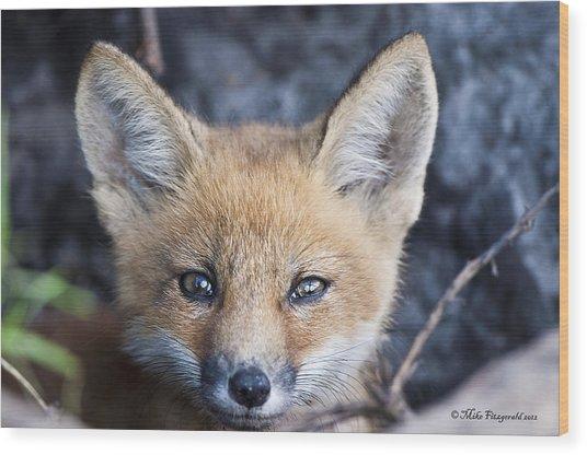 Foxy Cute Wood Print