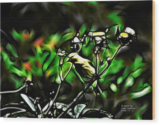Fractal S - Take A Look - Lesser Goldfinch Wood Print
