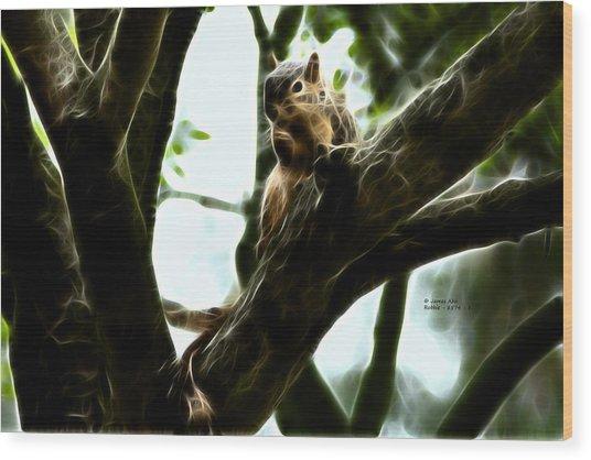 Fractal - Thumb Sucker - Robbie The Squirrel - 8574 Wood Print