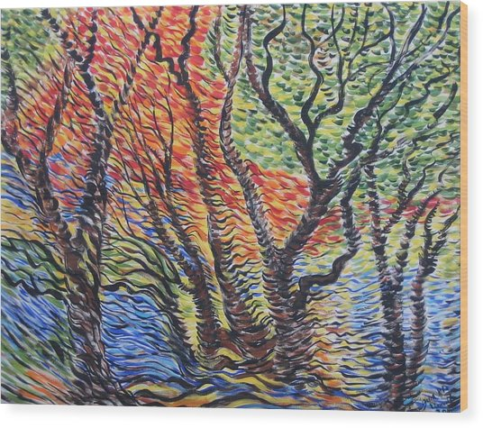 Frest Reflection Wood Print by Julia Rita Theriault