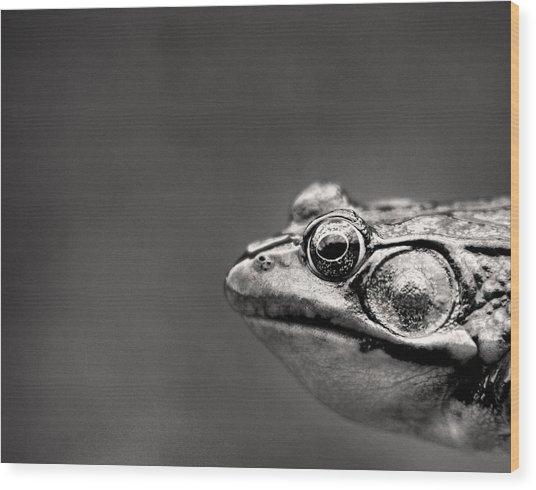 Frog Portrait Wood Print