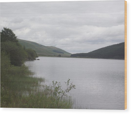 From The Shoreline Of St Marys Loch Wood Print