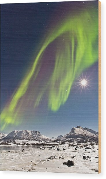 Frozen World Wood Print