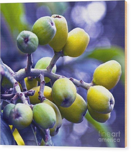 Sicilian Fruits Wood Print