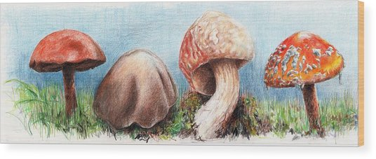 Fungus Panorama Wood Print