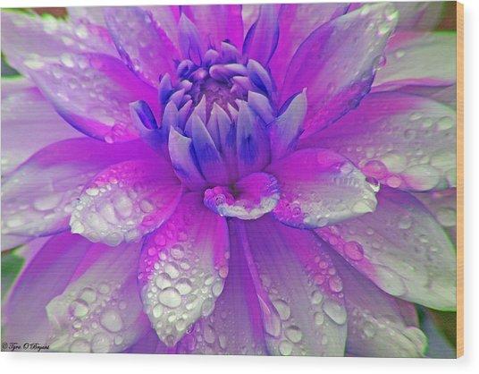 Fusia Flower Wood Print