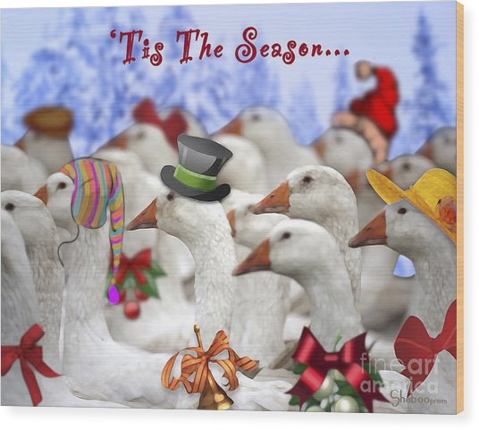 Gaggle O' Greetings Wood Print