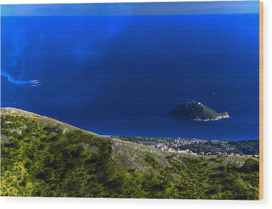 Wood Print featuring the photograph Gallinara Island And Coast With Air Show by Enrico Pelos