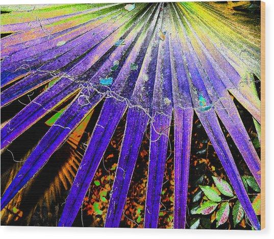 Garden Palm At Night Wood Print