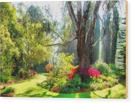 Garden Sunlight 2 Wood Print