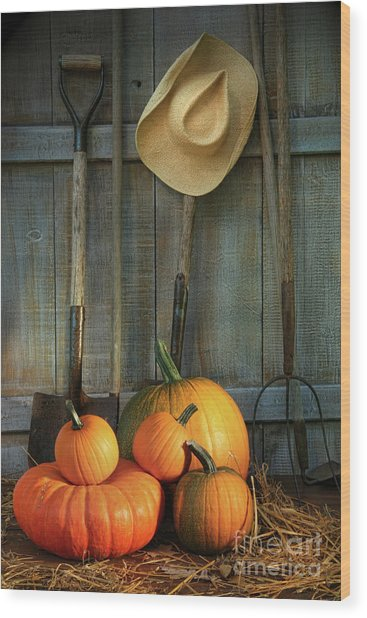 Garden Tools In Shed With Pumpkins Wood Print